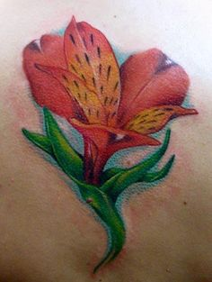 lily tattoos | stargazer lily tattoo on back lily flower lily tattoos tattoos tattoo ...