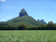 Rempart mountain in the foreground and Trois Mamelles in the background.