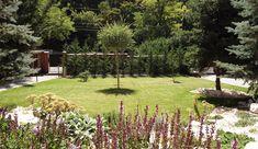 rock garden - sziklakert