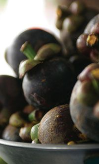Dozens of studies demonstrate the incredibly beneficial properties of the mangosteen fruit.