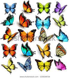 Descubra De Mariposas Coloridas Volando En Diferentes imágenes de stock en HD y millones de otras fotos, ilustraciones y vectores en stock libres de regalías en la colección de Shutterstock.  Se agregan miles de imágenes nuevas de alta calidad todos los días.