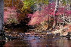Home - Norwalk River Watershed Association