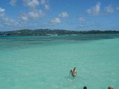 The Nylon Pool - Tobago