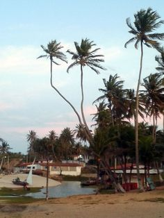 Praia de Caraúbas -RN