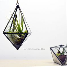Geometric Air Plant Terrarium// Tetrahedron// by PinkSerissa