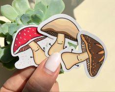 Mushroom Lover Gift Magnet Funny Pun 2.5 x 3.5