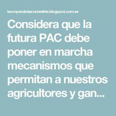 Considera que la futura PAC debe poner en marcha mecanismos que permitan a nuestros agricultores y ganaderos tener una posición de equilibrio  Confía en que Europa se dote de una legislación que nos permita avanzar en la mejora de la cadena alimentaria  Destaca que todas las medidas que se adopten en el ámbito del bienestar animal deben estar avaladas por informes científicos