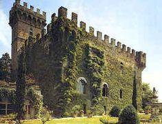Castello di Vincigliata castl