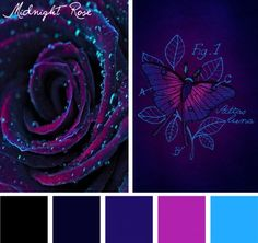 Find beauty in darkness with this Midnight Rose color inspiration.