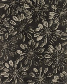 View Silaum Silaus by Karl Blossfeldt on artnet. Browse upcoming and past auction lots by Karl Blossfeldt. Karl Blossfeldt, Patterns In Nature, Textures Patterns, Print Patterns, Botanical Art, Botanical Illustration, Motif Jungle, Motifs Textiles, Motif Floral