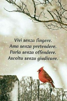 """From """"Recovery in Italian: Carry This Message."""" Translation: """"Live without feigning. Listen without judging. Words Quotes, Life Quotes, Italian Quotes, Something To Remember, Desiderata, Frases Tumblr, Learning Italian, Zodiac Quotes, Quotations"""
