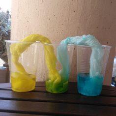 Este experimento es una variación del Experimento de capilaridad: transferencia de agua entre dos vasos. Aquí hemos utilizado la acción capilar para mezclar dos colores, amarillo y azul. Requiere algo de paciencia pero el...