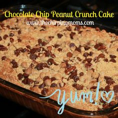 Chocolate Chip Peanut Crunch Cake Recipe : The Chirping Moms