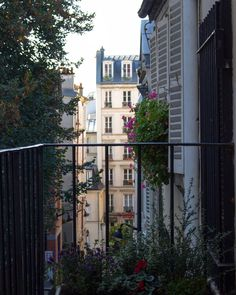 Paris et ses jardins de pots