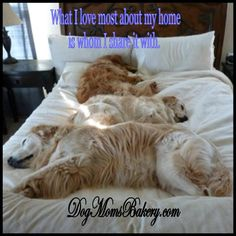 even if they are bed hogs!