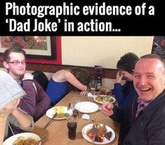 funny photos, funny pics, daily lolz