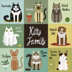 Kitty Family Art Print by Jenn Ski Family Poster, Family Print, Crazy Cat Lady, Crazy Cats, Video Chat, Son Chat, Photo Chat, Cat Posters, Cat Art