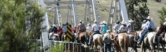 Appaloosa Horses and Riders crossing the Silver Bridge over the Salmon River on an Annual Ride. Appaloosa Horses, Rv Parks, Tent Camping, Salmon, Bridge, River, Image, Mobile Home Parks, Bro