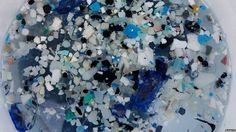 Plastic found in remote South Pacific https://tmbw.news/plastic-found-in-remote-south-pacific  Our service collects news from different sources of world SMI and publishes it in a comfortable way for you. Here you can find a lot of interesting and, what is important, fresh information. Follow our groups. Read the latest news from the whole world. Remain with...Read more on TmBW.News