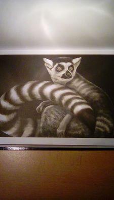 lemur by annett mattis lemurcoloring book