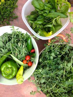 La Feria Delivery: Hortalizas orgánicas en la puerta de tu casa - The Deco Journal