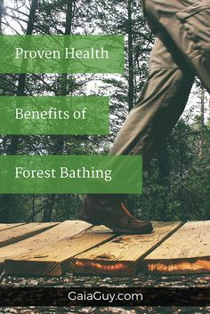 Forest bathing (shinrin-yoku Forest therapy), also called forest medicine now has scientific proof that it works for a number of ailments like; cancer, depressi