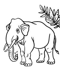 Free Elephant Coloring Page Free Printable Coloring Pages, Free Coloring Pages, Coloring Sheets, Coloring Books, Elephant Coloring Page, Holiday Themes, Pet Birds, Moose Art, Printables