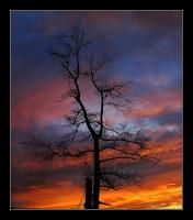photo : *** | photographer : Yuri Bonder Personal Photo, Yuri, Clouds, Celestial, Sunset, Outdoor, Outdoors, Sunsets, Outdoor Games