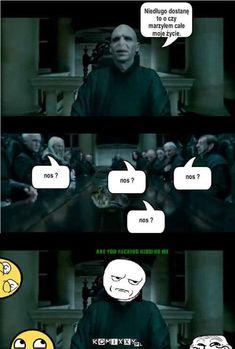 Harry Potter Mems, Harry Potter Fan Art, Wtf Funny, Funny Cats, Funny Memes, Funny Lyrics, Weekend Humor, Pokemon, Film Movie