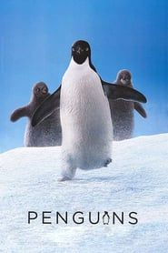 DisneyNature Penguins Movie Poster 2019 Disney movies you do not want to miss! From live-action remakes to superhero classics, the 2019 Disney slate offers something for everyone. Movies 2019, New Movies, Disney Movies, Disney Pixar, Movies To Watch, Movies Online, Good Movies, Movies Free, April Movies