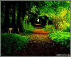 Kilkenny, a little piece of Heaven on earth