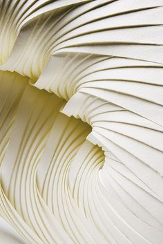 Part of a series of small paper sculptures using hand-pleated paper components to create modular forms. Multipleat (Leaf)