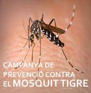 Salva la veu del Poble: Campaña de prevención contra el Mosquito tigre