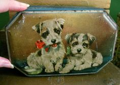 Old Candy Tin With Little Terrier Dog Puppies by Somethingcharming Old Candy, Tin Containers, Vintage Tins, Tin Boxes, Terrier Dogs, Confectionery, Old And New, Gods Love, Biscuit