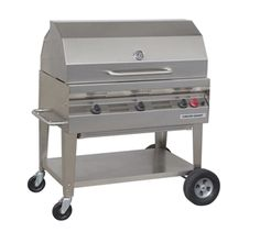 silver giant grill