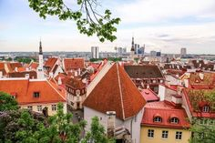 Looking for top things to do in Tallinn, Estonia? This list includes unusual things to do to what to see in Tallinn for history buffs, relaxation and more. 3 Days In Amsterdam, Amsterdam Photos, Visit Amsterdam, Amsterdam City, Amsterdam Travel, Lloyd Hotel Amsterdam, Victoria Hotel Amsterdam, Amsterdam Itinerary, Cozy Cafe