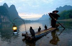 Fishing With Cormorants10