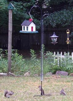 """Add a """"SLINKY"""" to Protect your Bird Feeder from squirrels"""