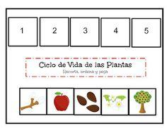 Menta Más Chocolate - RECURSOS y ACTIVIDADES PARA EDUCACIÓN INFANTIL: Actividades sobre el CICLO DE VIDA de las PLANTAS