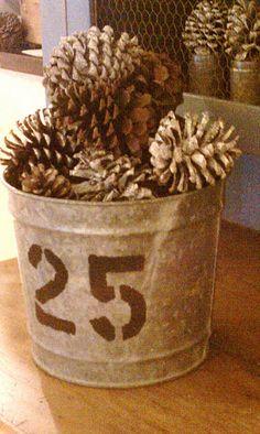Pinecones in a bucket