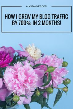 The Secret To How I Grew My Blog Traffic By 700% In 2 Months! - ALYSSA KNEE