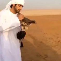 11/16/14 VIDEO hamda_alhamli