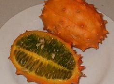 Pepino Gold - obchod so sadenicami exotických rastlín Fish, Fruit, Vegetables, Gold, Veggie Food, Vegetable Recipes, Veggies, Ichthys, Yellow