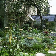 Garden Photos (577 of 707) - Lonny
