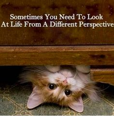 When things just don't look right, step back (or turn upside down) and look at things from a different perspective.