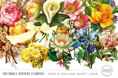 100 Small Vintage Flower Graphics by Eclectic Anthology on @creativemarket
