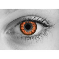 <ul> <li> Sales are final on all Halloween contacts.</li> <li>Delivery time for all Halloween contact lenses is approximately <b>7-10 business days</b>.</li> <li>Please note that the appearance of the contact lenses in the photos is just a representation. It may look different on your actual eyes.</li>  <li>These Halloween lenses have been featured in movies and TV shows such as <b><i>True Blood, The Walking Dead, House, World War Z, Alice in Wonderland, Interview with the Vampire</i></b…