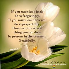 If you must look back, do so forgivingly. If you must look forward, do so prayerfully. However, the wisest thing you can do is be present in the present....Gratefully. ― Maya Angelou