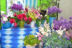 The Chelsea Flower Show 2014 - Designers Guild Pop-Up Garden (houseandgarden.co.uk)