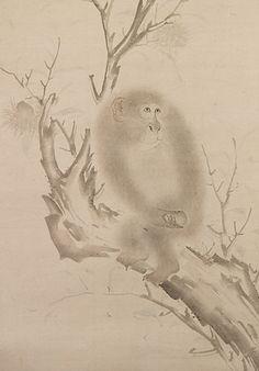 Mori Sosen (1747-1821) Japanese Painter, Edo Period Animal Paintings, Animal Drawings, Drawing Animals, Ink Painting, Figure Painting, Year Of The Monkey, Japanese Painting, Japan Art, Contemporary Artists